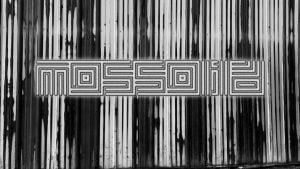 Optimized-Mossoid Thumbnail-9ea19163